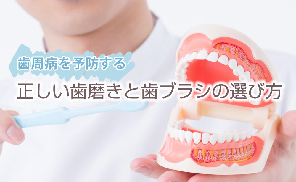 歯磨き粉 歯槽 膿 漏